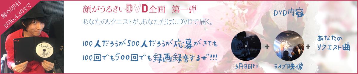 DVD企画