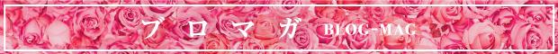 ブログ・メルマガ 2