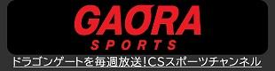 ドラゴンゲートを毎週放送!CSスポーツチャンネル